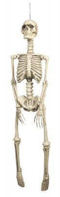 Faux Squelette 90 cm