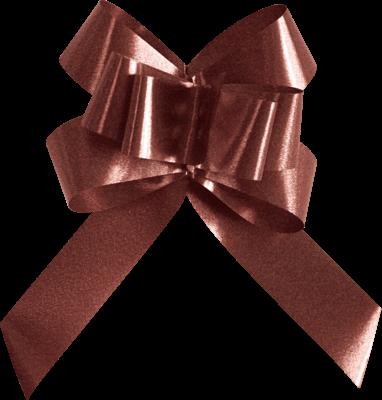 Sachets 20 Noeuds automatiques FLOWER, Chocolat