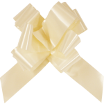 Sachet 10 Grands noeuds, ivoire