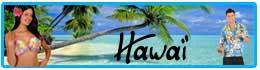 Décorations et déguisements Hawai